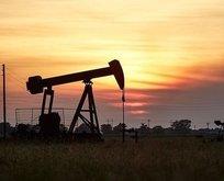 Brent petrolde düşüş