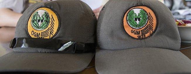Tarım ve Orman Bakanlığı personel alımı ne zaman? 2019 OGM 5000 memur alımı şartları belli oldu mu?