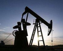 Brent petrol fiyatlarında hareketlilik