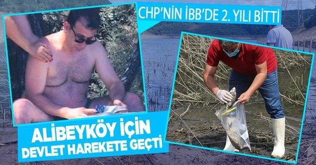 Alibeyköy Barajı zehir saçıyor! Harekete geçildi