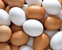 Yumurtayla yaşlanma