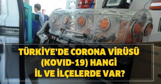 Türkiye'de corona virüsü Kovid-19 hangi il ve ilçelerde var?