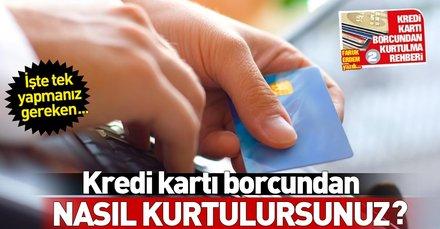 Ekstreyi getiren borcu sildirir   Kredi kartı borç yapılandırma projesinde istenen belgeler neler?