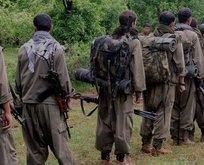 Turuncu listedeki o terörist PKK'nın gerçek yüzünü anlattı!
