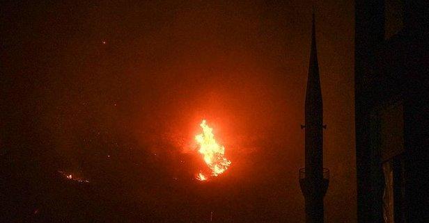 Antalya'nın Gazipaşa ilçesinde orman yangını!