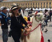 Gülman'ın lama sınavı