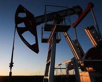 Brent petrol fiyatı yatay seyrediyor