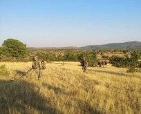 PKK'ya ağır darbe! 15 Nisan'dan bu yana...
