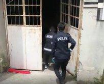 Kaçak sigara ve alkol örgütüne dev operasyon