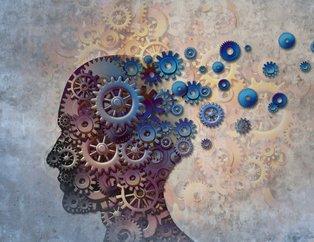 Bu besinler hem beyni besliyor hem de hafızayı güçlendiriyor