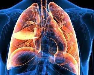 Akciğer kanserinden koruyan 6 altın kural!