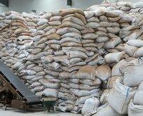 Çay çöpleri, iki şekilde ekonomiye katkı sağlayacak