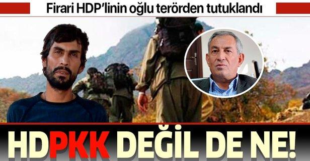 Firari HDP'li Çelik'in oğlu terörden tutklandı!