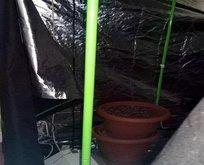 Evde uyuşturucu çadırı! Yakalandılar!