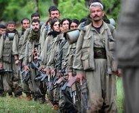 PKK'da büyük panik! Destek sıfıra indi...