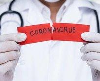 Koronavirüs sonrası ilk açılacak iş yerleri hangileri?