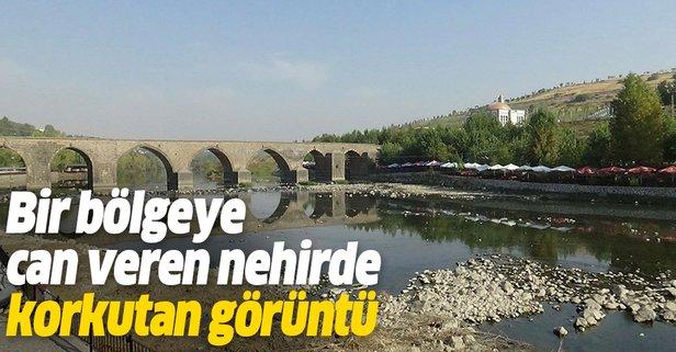 Dicle Nehri'nde korkutan görüntü