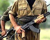 PKK'nın Amanos yapılanması deşifre oldu!