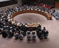 BM Güvenlik Konseyi'ne yeni üyeler seçildi