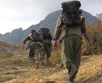 PKK'ya eleman temin eden HDP'li isim tutuklandı!
