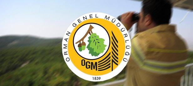 isealim.ogm.gov.tr: OGM personel alımı başvuru sonuçları açıklandı mı? Orman Genel Müdürlüğü sonuçları sorgulama