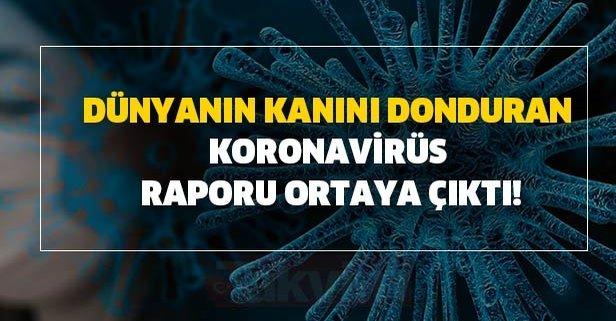 Dünyanın kanını donduran Koronavirüs raporu ortaya çıktı!