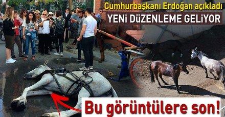 Cumhurbaşkanı Erdoğan Adalar'daki faytonlarda atların kullanılmayacağını açıkladı