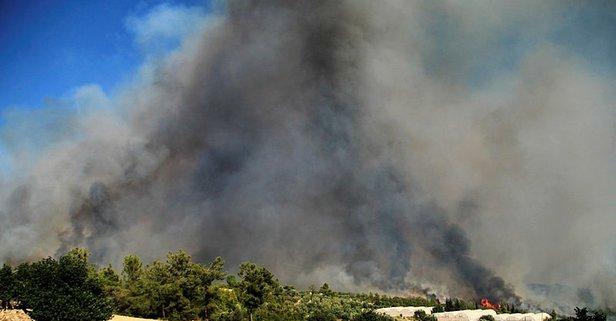 Türkiye yangın haritası! 30 Temmuz yangın olan iller! Yangın hangi illerde devam ediyor?