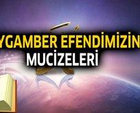 Peygamber Efendimizin mucizeleri nelerdir?