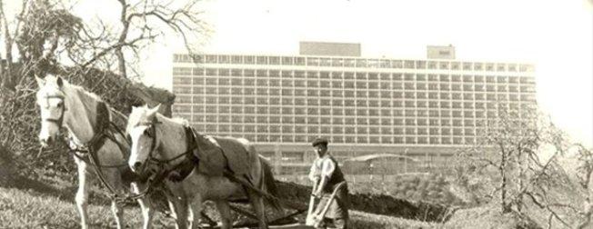 İstanbul bir zamanlar böyleydi! İşte eski İstanbul'dan nostaljik fotoğraflar
