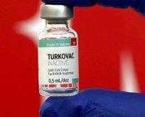Yerli aşı ne zaman çıkacak?