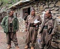 PKK elebaşlarını operasyon korkusu sardı!