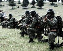 PKK'nın soluğunu kesen operasyon