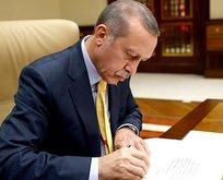 Başkan Erdoğan'a 2 başdanışman, 2 danışman