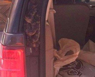 Aracının kapısını açınca şoke oldu
