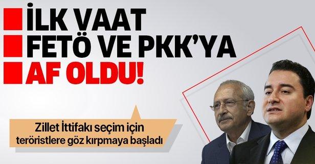 İlk vaat FETÖ ve PKK'ya af!