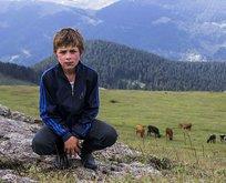 Eren'imizi şehit eden PKK'lı hain tutuklandı