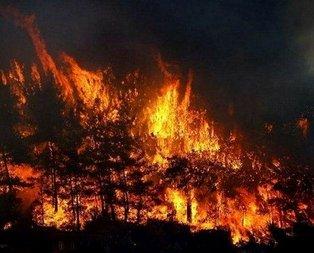Bir yangın da Samsun'da!