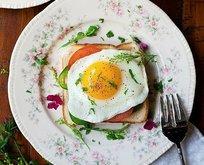 Böbrek taşına zeytinyağı yumurta