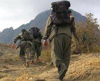 7 PKK'lı terörist daha teslim oldu