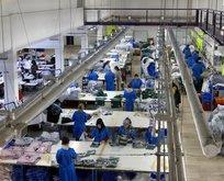 İstihdam arttı İşsizlik Sigortasına başvurular azaldı