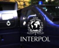 Interpol'ün aradığı suçlu Bulgaristan'da paketlendi!