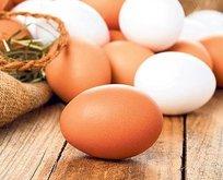 Yumurta aşkı