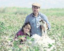 Tarımı büyütmek için mutabakat tamam
