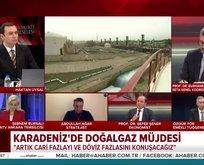 Doğalgaz Türkiye'de enflasyonu nasıl etkiler?