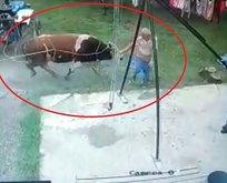 Kurbanlık boğanın saldırısına uğrayan adam öldü