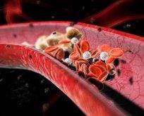 Kolesterolün de hayırlısı