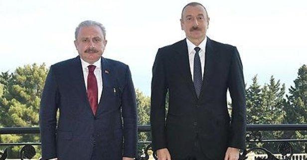 TBMM Başkanı Şentop, Aliyev ile görüştü