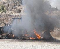 Hainler, orman yakıp şantiyelere saldırdı