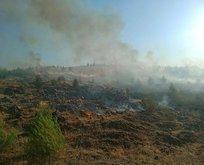 Gaziantep'te ormanlık alanda yangın!